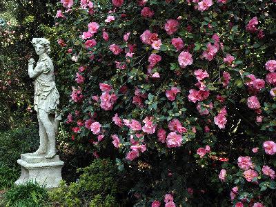 Huntington Botanic Gardens Los Angeles